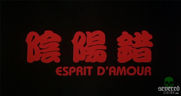DVD Screenshot from Esprit D'Amour from Media Asia and Mega Star on Severed Cinema