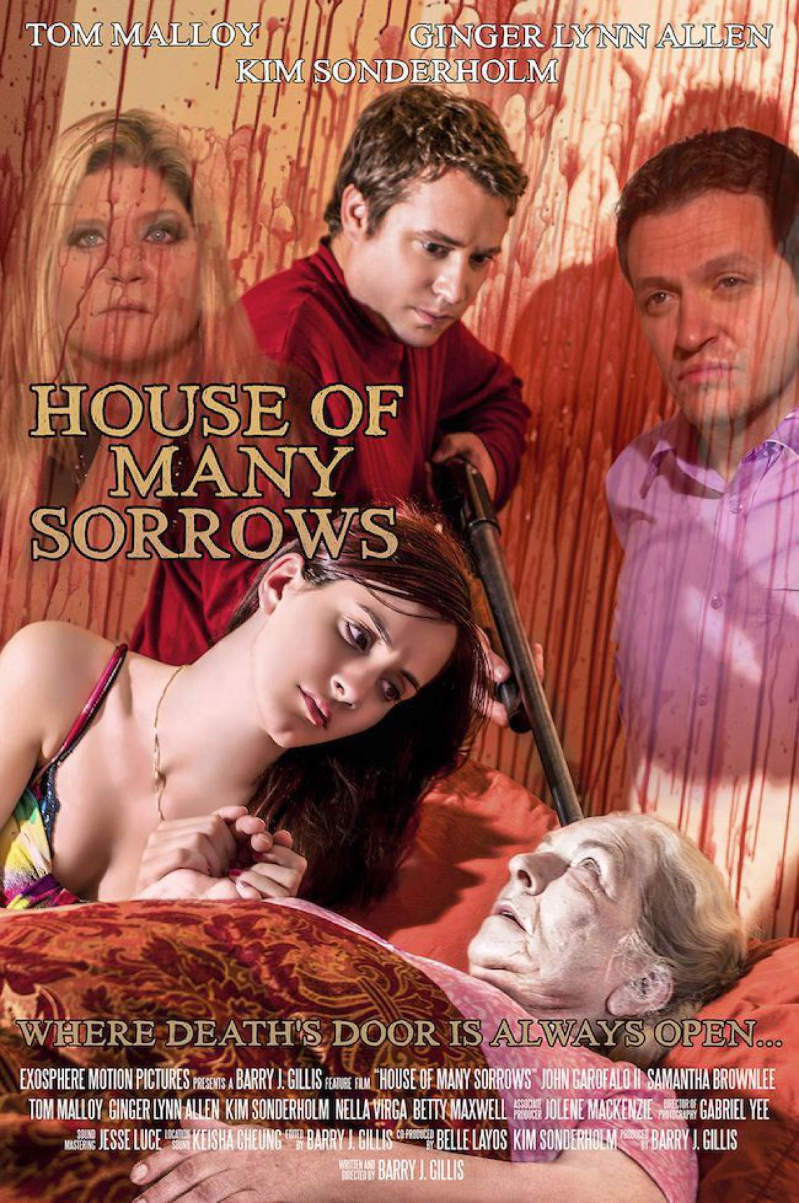 http://severedbloodlines.com/severed-cinema/images/news/laurence-r-harvey/house-of-many-sorrows-poster.jpg