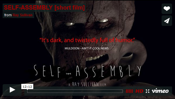 Self-Assembly Short Film